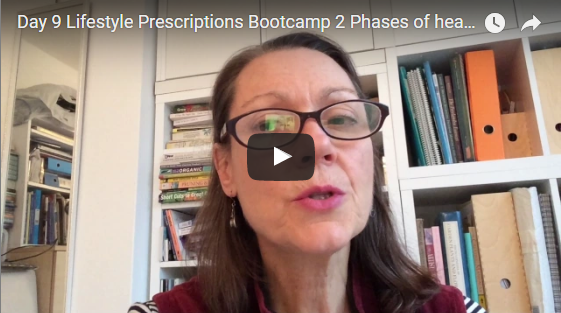Day 9 Lifestyle Prescriptions Bootcamp 2 Phases of healing Symptoms